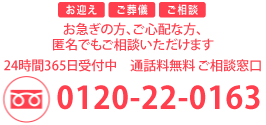 0120-22-0163